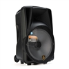 Avcrowns LB-16  Bluetooth Trolley Speaker 20000W With Mic Black