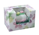Quarter Pound Watercolor Daisy Window Candy Boxes