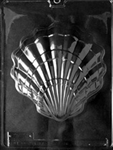 Large Shell Chocolate Mold