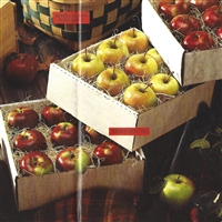 Mayer's Apple Trio