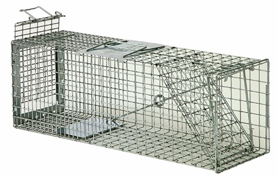 Squirrel Safeguard Box Trap 52824 for Rabbits, Skunks & Larger Squirrels