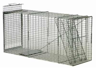 Large Safeguard Box Trap 52848 for Dogs