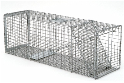 Professional Safeguard Box Trap 54136