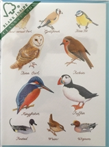 British Birds Card