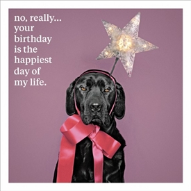 Your Birthday Card