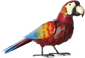Amazon Parrot Ornament