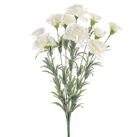 White Carnation Bush