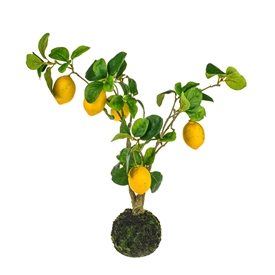 Lemon Tree Decoration 58cm
