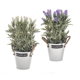 DUE JAN Potted Lavender Flowers In Metal Bucket 2 Assorted