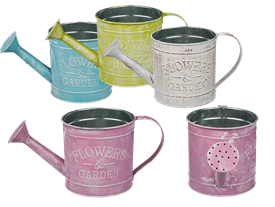 Colourful Metal Watering Can 4 Assorted 12cm