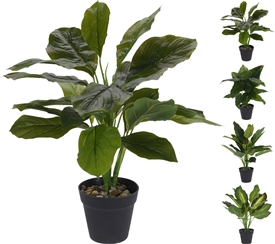 Fake Potted Plant 4 Assorted 45cm