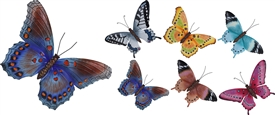 Large Butterfly Wall Decoration 6 Assorted
