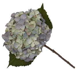 Single Stem Hydrangea In 2 Tone Green And Blue 46cm