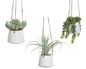 Artificial Potted Green Plant In Hanging Pot- 3 Assorted- 30cm