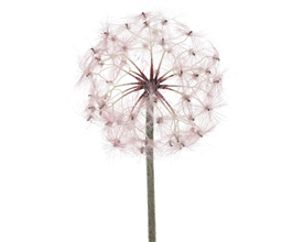 Pink Artificial Dandelion Flower- 90cm