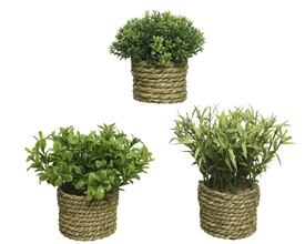 Artificial Green Potted Plant In Grass Pot- 3 Assorted- 16cm