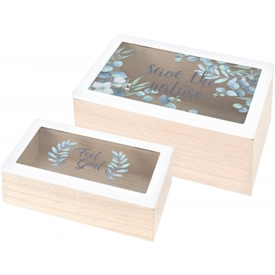 Set Of 2 Boxes With Glass Lids