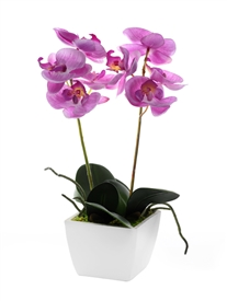 Potted Pink Orchid 33cm