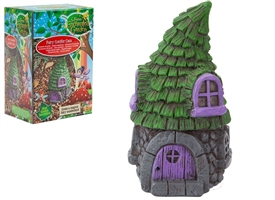 Fairy Garden Conifer Casa