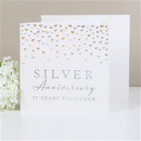 Amore Deluxe Card Silver Anniversary