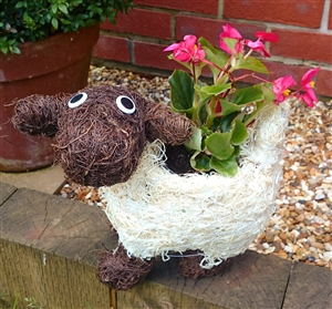 Small Cute Brown And White Brushwood Sheep Planter 28cm