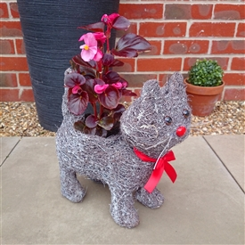 Grey Brushwood Standing Cat Planter 31cm
