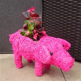 Bright Pink Brushwood Standing Pig Planter 32cm