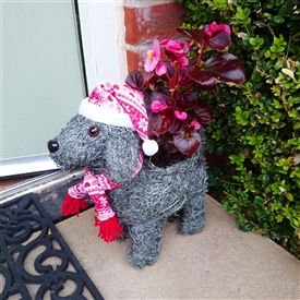 Christmas Dog Planter 26cm