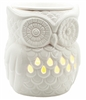 Electric Wax Melter � Owl