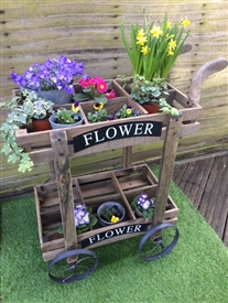 REDUCED, LIMITED TIME ONLY<p>Double Cart Planter - 85cm