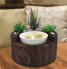 DUE MID MARCH Succulent Garden Electric Wax Melter - Walnut