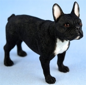 French Bulldog Black