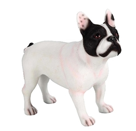 French Bulldog Black & White