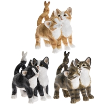 Affection Cats 3 Assorted 10cm
