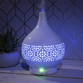Colour Changing Desire Aroma Humidifier Flower