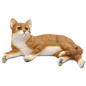 Laying Ginger And White Cat