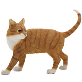 Standing Ginger And White Cat