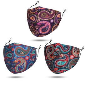 Paisley Reusable Face Mask With Filters 3 Assorted