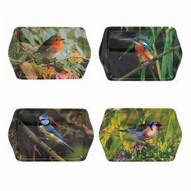 Bird Tray 4 Assorted