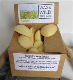 Box of 20 Soy Wax Melts - Energise