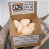 Box of 20 Soy Wax Melts - Warm Gingerbread