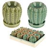 DUE AUGUST -Cactus Wax Melter / Oil Burner 2 Assorted