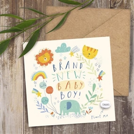 Card With Magic Growing Bean � Baby Boy