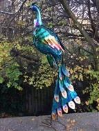 Vivid Metal Peacock with Head Turned 92cm