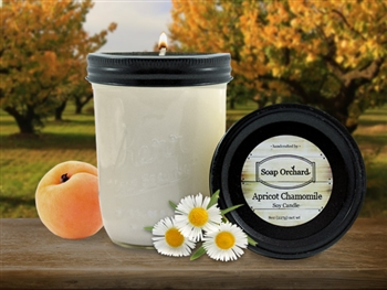 Apricot Chamomile 16oJar Soy Candle