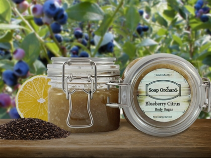Blueberry Citrus Body Sugar