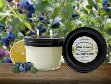 Blueberry Citrus Double Wick Soy Candle - Retiring