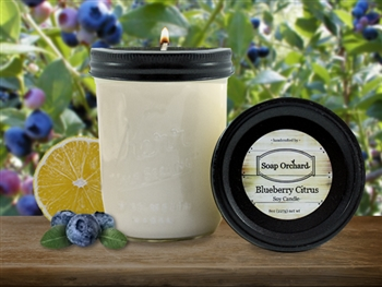 Blueberry Citrus 16oz Jar Soy Candle - Retiring