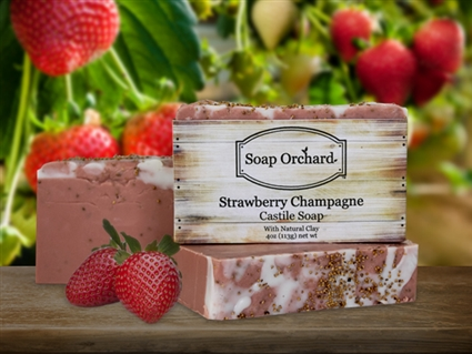 Strawberry Champagne Castile Soap - Retiring