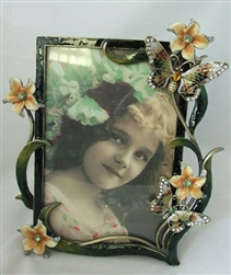 Multi-Color Flower and Butterfly Frame